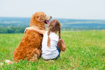 Little girl hugging retriever in the field, looking into the distance